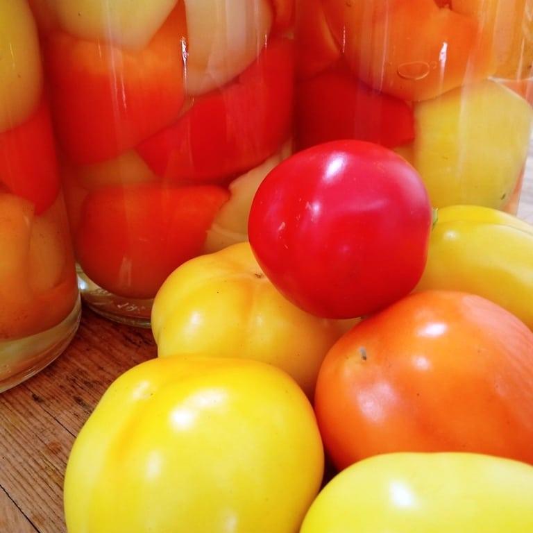 Paprika paradajzerica